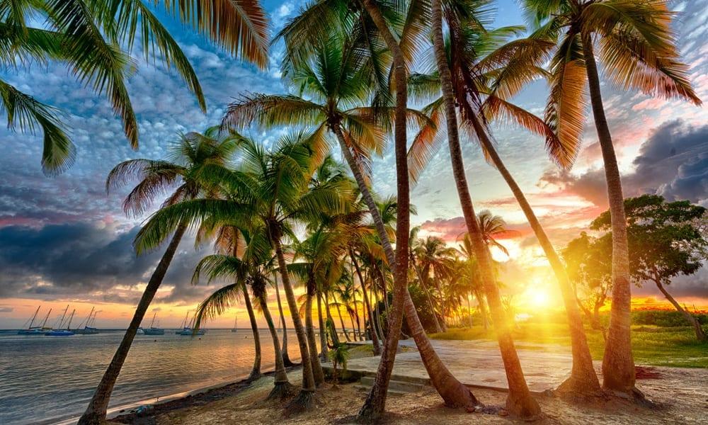 Quand se rendre en Guadeloupe?